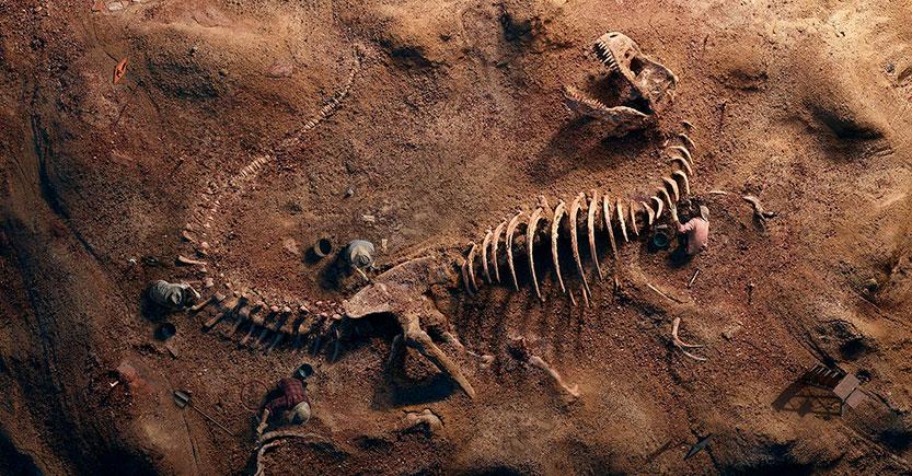 Los fósiles de los dinosaurios