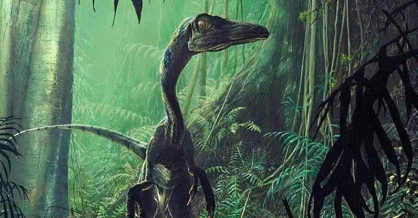 Dinosaurios Saurisquios (Saurischia) Cadera de lagarto