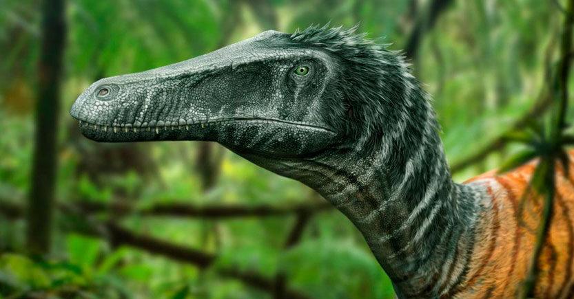 5 curiosidades sobre los dinosaurios
