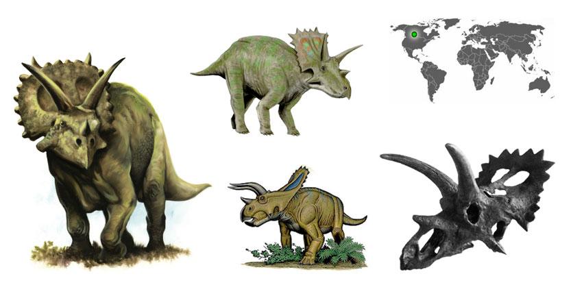 arrhinoceratops