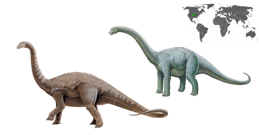 bothriospondylus