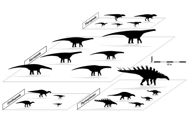 cuatro grupos principales de dinosaurios