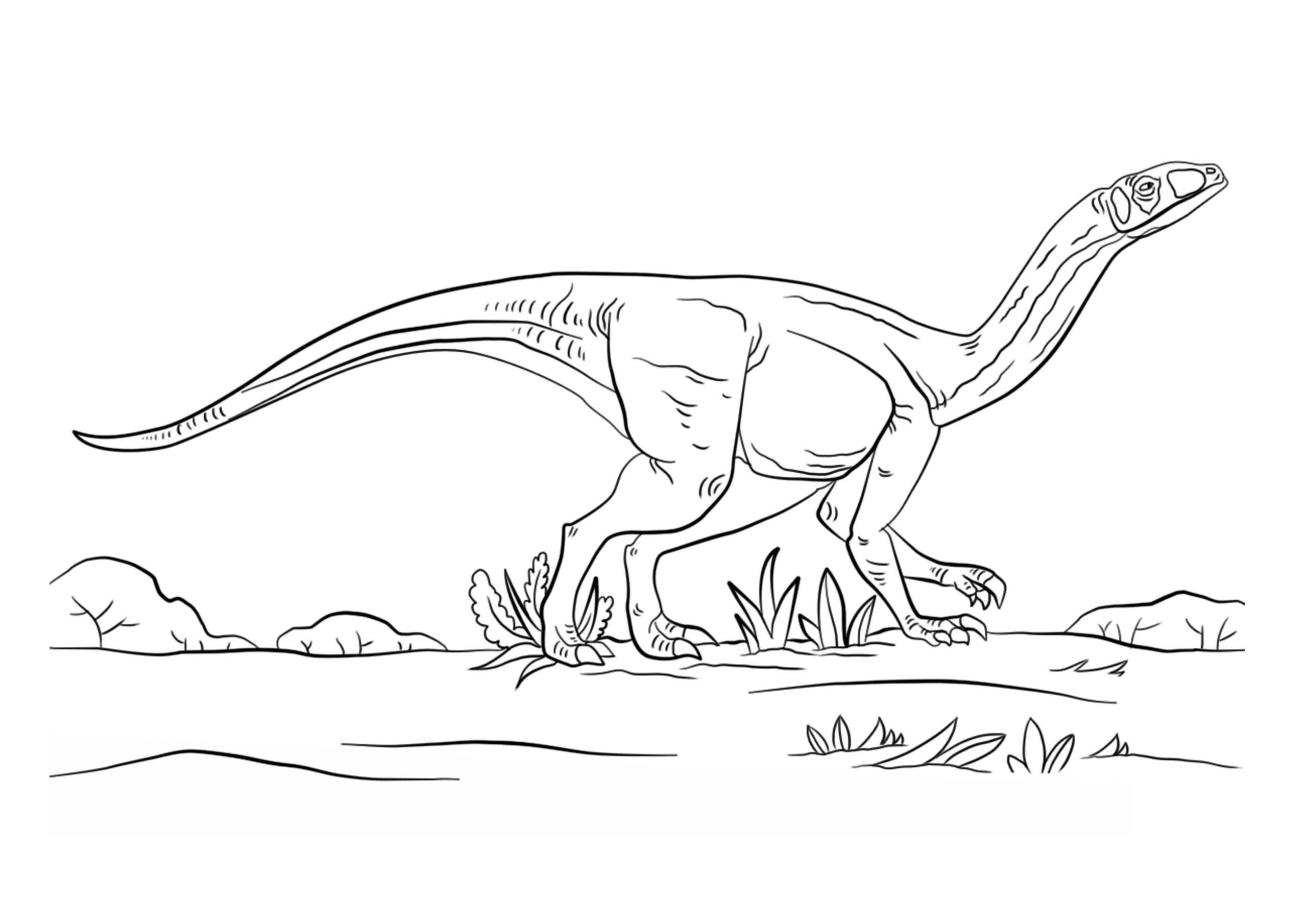 dinosaurios para colorear 3