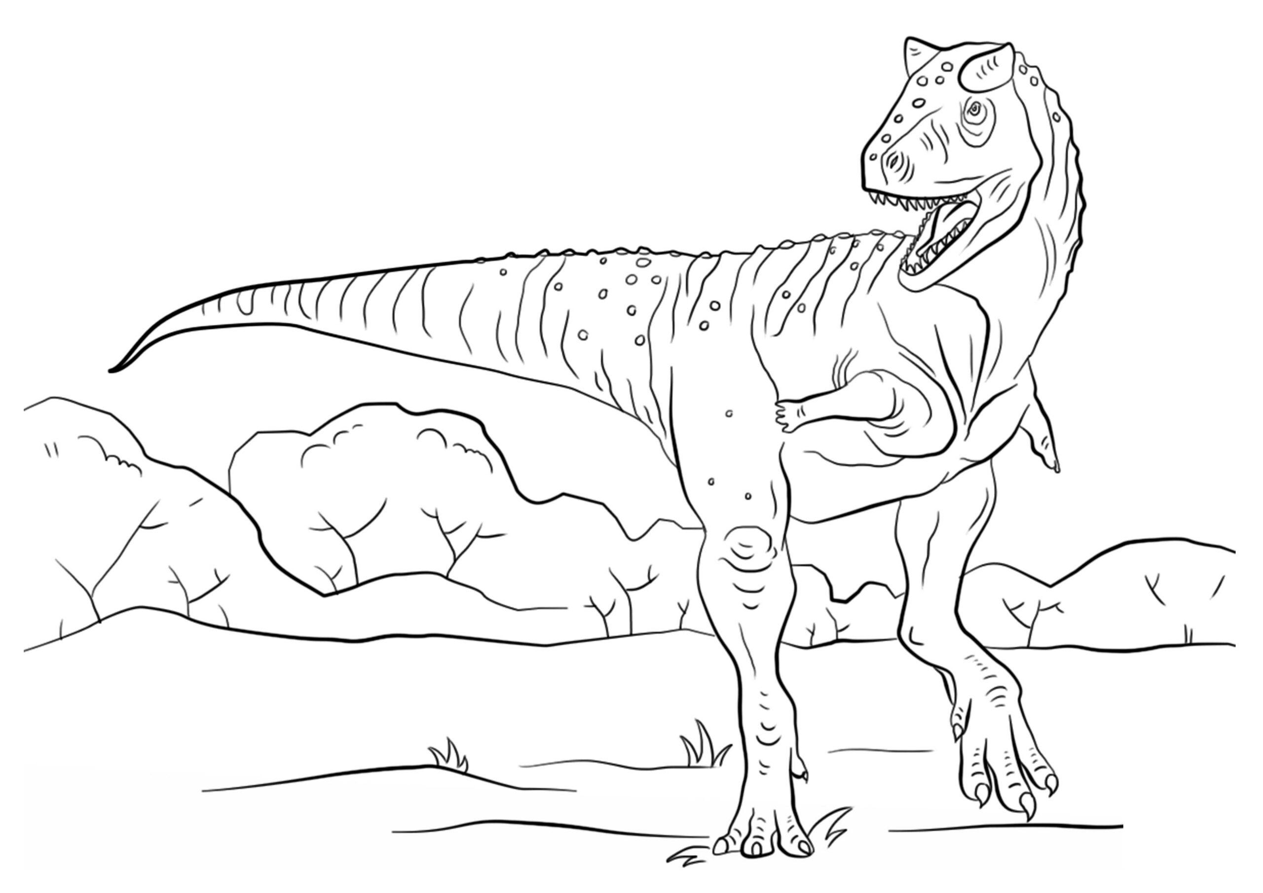 dinosaurios para pintar 5