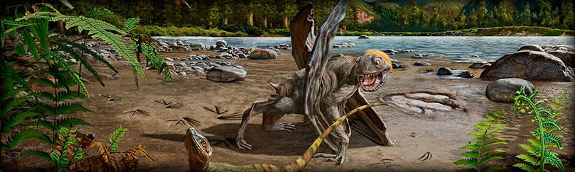 Dinosaurios voladores, Pterosaurios.