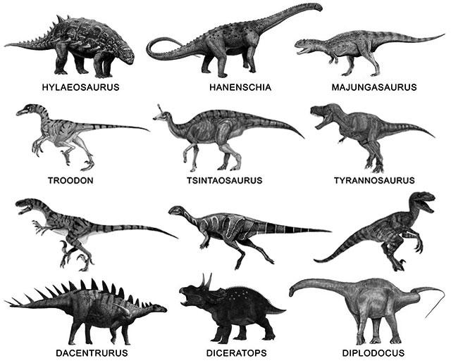 Ejemplos de nomnres de dinosaurios A