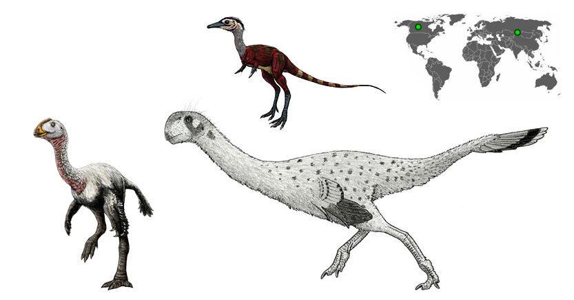 elmisaurus