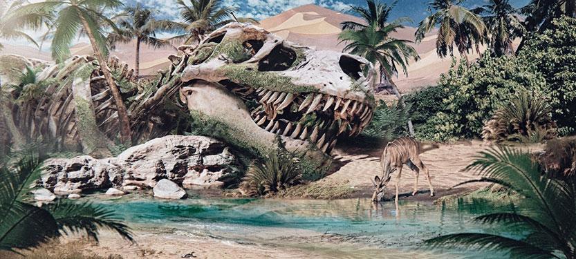 fosiles de dinosaurio