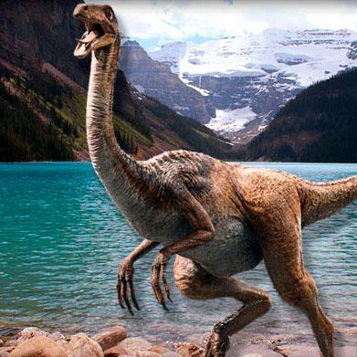 Los Gallimimus fueron dinosaurios omnívoros