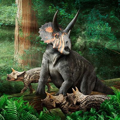 genero triceratops