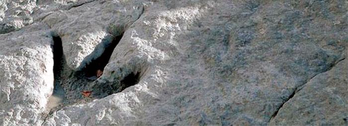 huella de teropodo en la cuenca de camerosen la rioja, hallada en uno de los Yacimientos Españoles de dinosaurios