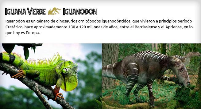 iguana e iguanodon