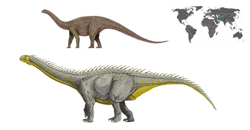 kotasaurus