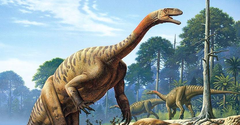 Los dinosaurios del período Triásico y otros reptiles