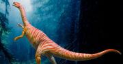 los dinosaurios y otros reptiles del triasico 2