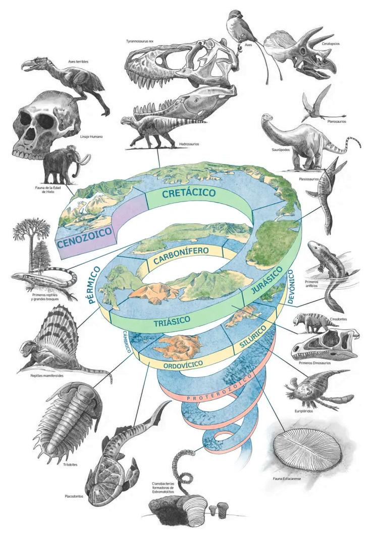 los periodos de la era mesozoica o mesozoico