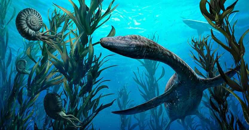 los reptiles acuaticos del jurasico