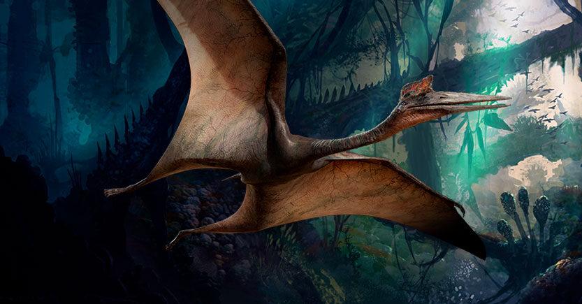 Los reptiles voladores del jurásico, Pterosaurios y Pterodáctilos