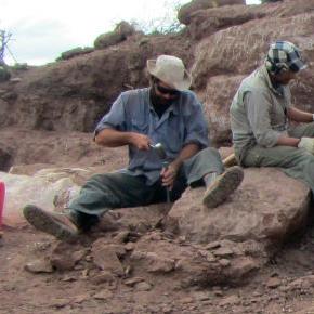 Marcos Müller (Paleontólogo)