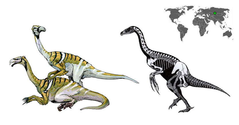 nanshiungosaurus