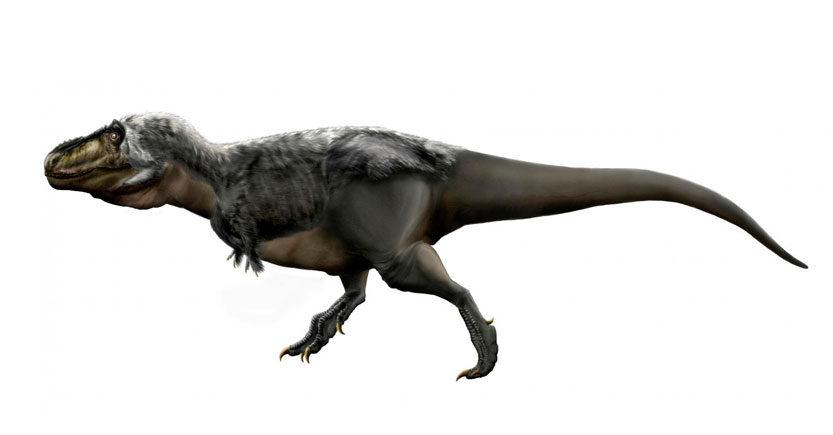 por que los dinosaurios podian caminar erectos
