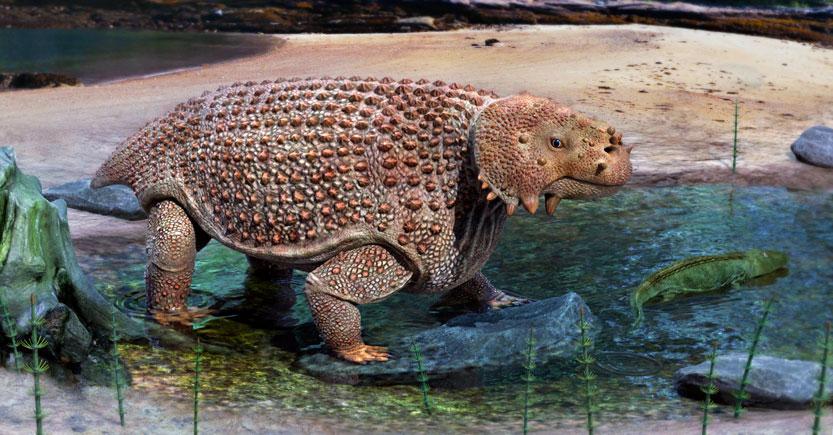scutosaurus