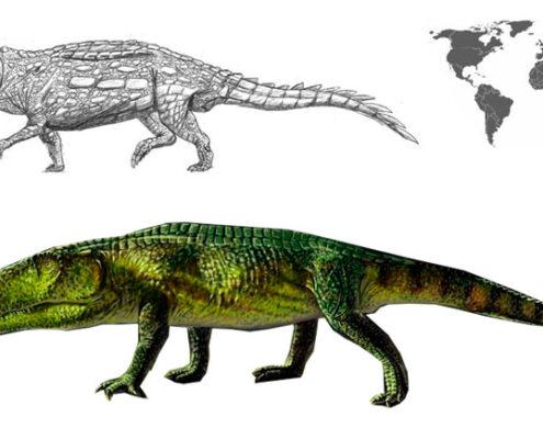 shansisuchus