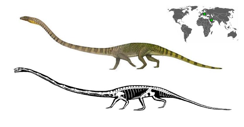 Los tanystropheus eran dinosaurios del período Triásico de cuello largo