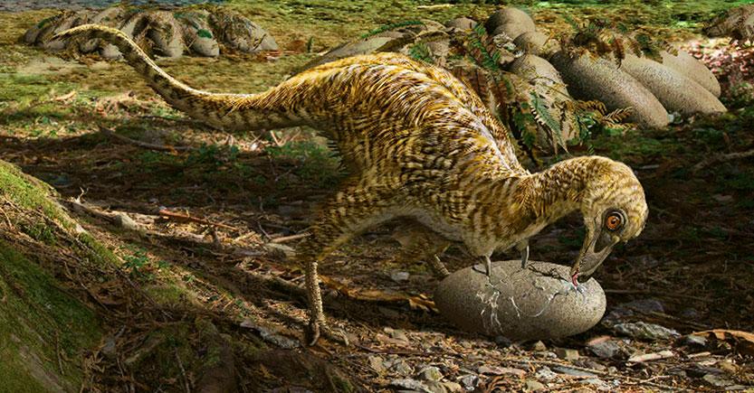 Teorías sobre los huevos de los dinosaurios