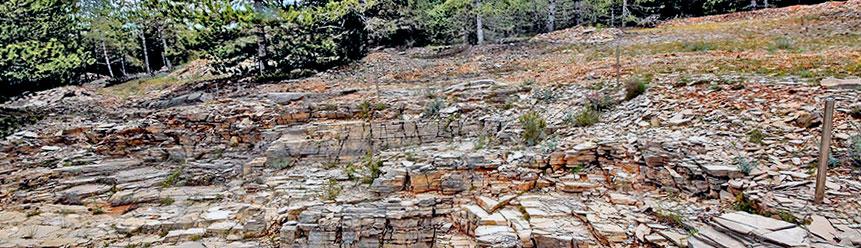 Yacimientos Españoles de dinosaurios de las hoyas cuenca